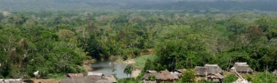 Paseo por la jungla en San Blas