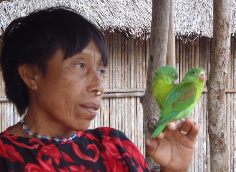 kuna woman in san blas islands